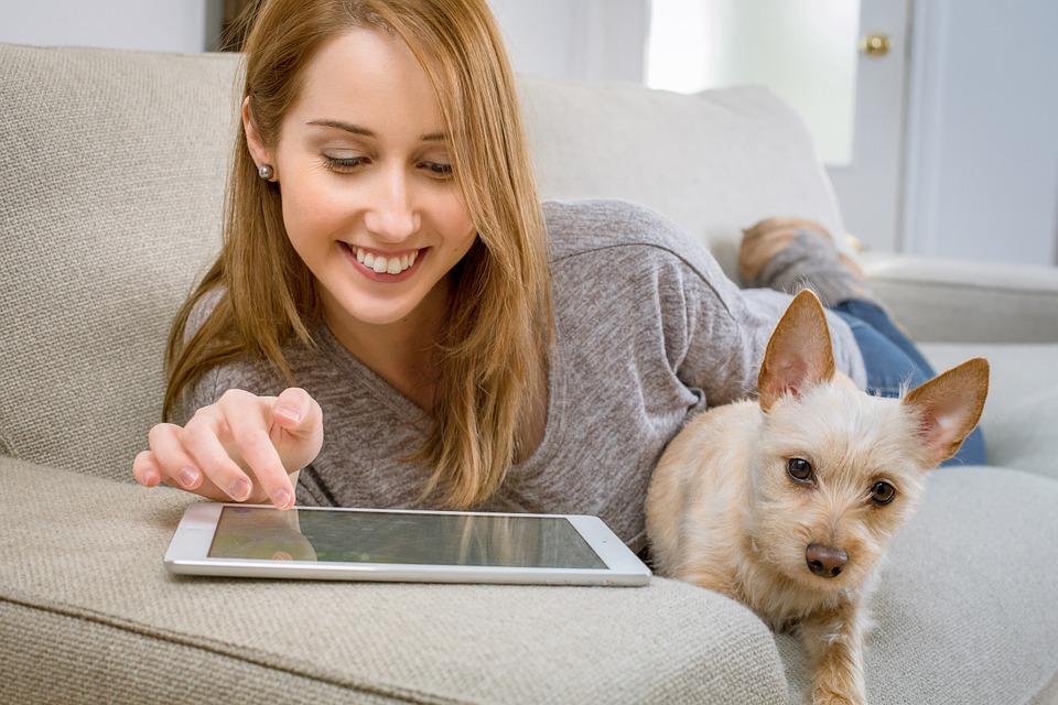 hogar seguro online